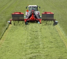 Pasture mixtures | Visscher Holland